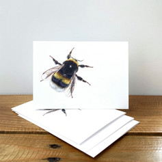 Bumblebee Notecards