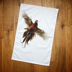 Flushed Pheasant