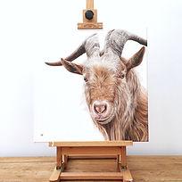 Golden Guernsey Goat painting