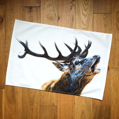 Bellowing Stag
