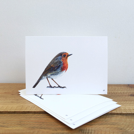 Robin Notecards