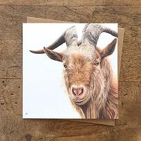 Golden Guernsey Goat + brown envelope.jp