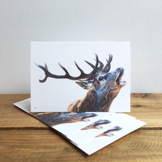 Bellowing Stag Notecards