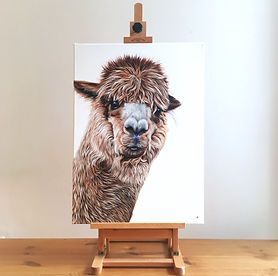 alpaca painting | alpaca art | alpaca print | alpaca picture | alpaca design | alpaca wall art | alpaca decor | alpaca gift | alpaca gifts | alpaca wool | llama painting | llama art | llama print | llama picture | llamas | alpaca canvas | alpacas | alpaca wall art | alpaca decoration | alpaca nose | alpaca image