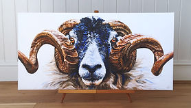 Sheep painting | Swaledale Ram | swaledale art | swaledale painting | swaledale print | swaledale sheep | swaledale picture | sheep art | sheep print | sheep picture | sheep painting | sheep design | sheep horns | ram horns | sheep wall art | sheep art print | ram art | ram wall art | ram art print | sheep decor | sheep design | sheep lovers | sheep chic | sheepish | sheep face | sheep gift | sheep gifts | farm animal painting | farm animal print | farm animal art | farm animal wall art | farm animal art print | farmyard art | farmyard print | farmyard art print | farmyard wall art | farmhouse decor | farmhouse art | farmhouse print | farmhouse design