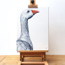 goose art | goose painting | goose picture | goose print | goose canvas | gander | gander painting | farm animal painting | farmyard | farmyard painting | farm art | farm painting | geese | geese painting | goose decor | goose gift