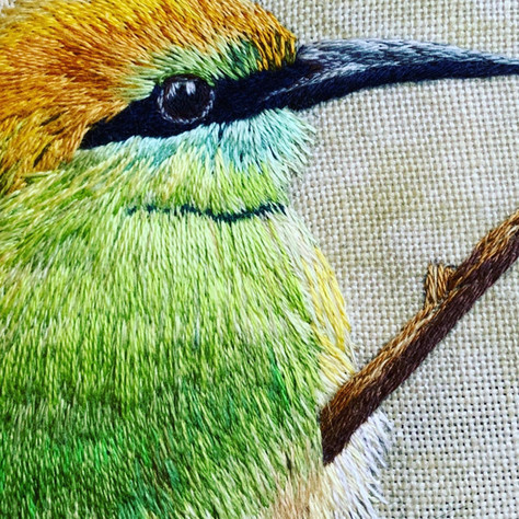 Close up of Little Green BeeEater
