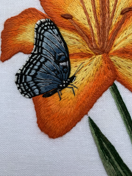 Close up of Lily and Butterfly
