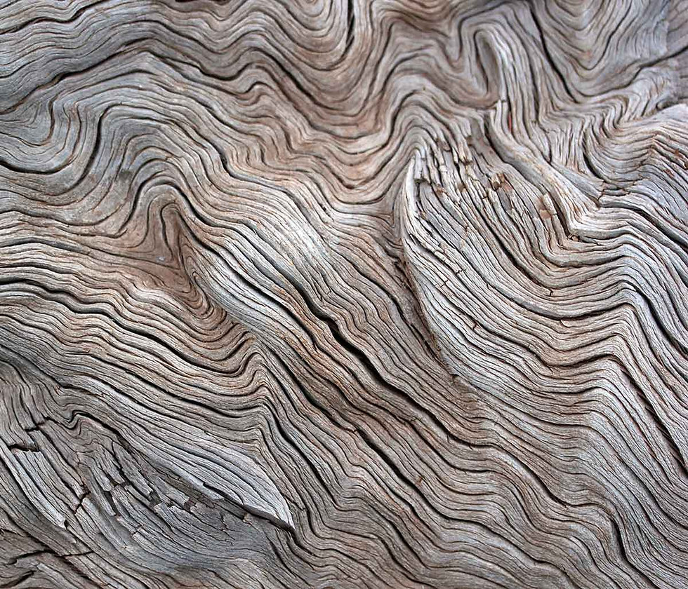 Driftwood_Cider_BG.jpg
