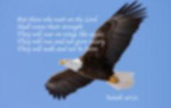 eagle-soaring-isaiah2.jpg