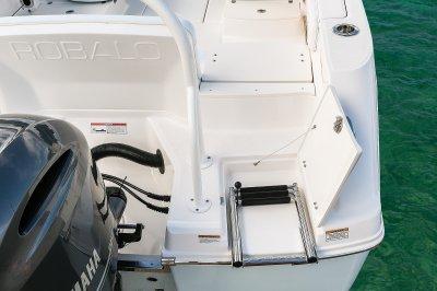 R207-LadderWalkThru-18
