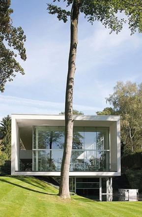 House Genets 3 Belgium