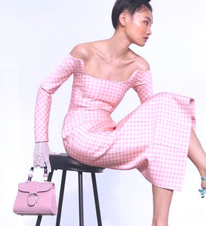 The wonderful world of Delvaux luxury bags