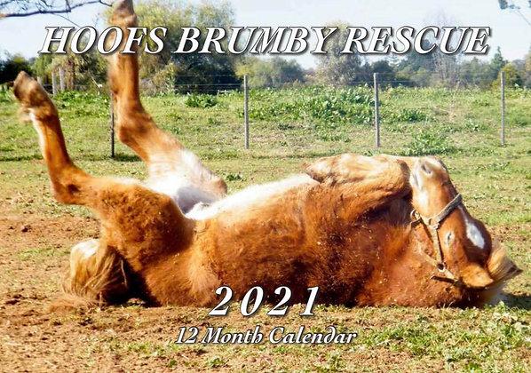 HOOFS Brumby Rescue  20210 Calendar