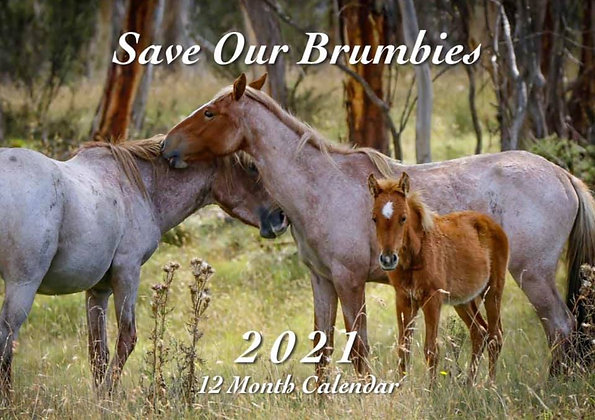 2021 Save Our Brumbies Calendar