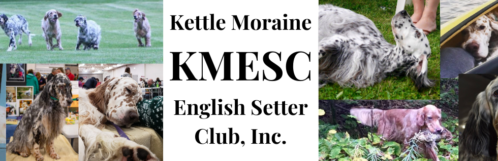 KMESC LOGO march 2021 update.png