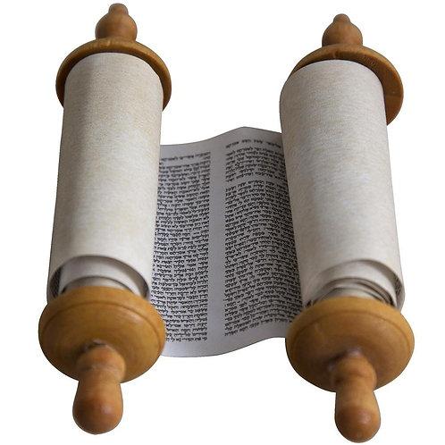 Sefer Torah Scroll
