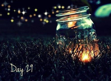 Road to 31 Devotion - Day 29 - Are you a Firefly?