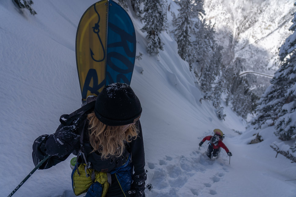 Snowboarding, Mountaineering, Splitboarding