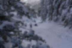 Snowboarding, Splitboarding, Mountaineering