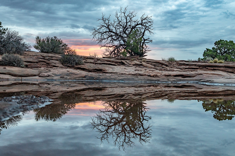 Sunrise, Reflection, Canyonlands National Park