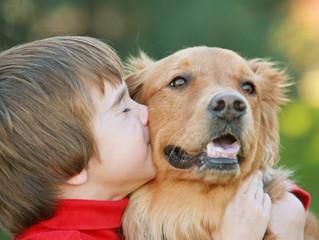 5 BENEFÍCIOS QUE O CONVÍVIO COM ANIMAIS DE ESTIMAÇÃO TRAZEM PARA AS CRIANÇAS