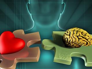 Você Utiliza a Inteligência Emocional nas Suas Relações?