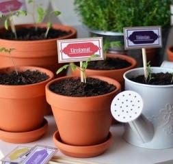 Benefícios da Jardinagem Para as Crianças