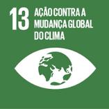 13 ação contra a mudança global do clima.png