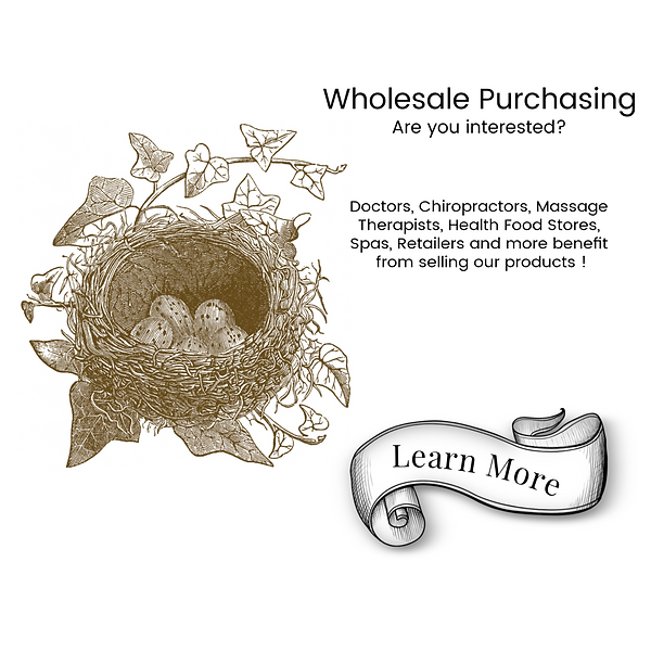 Wholesale Info Front Cover.png