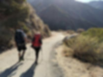 Hiking Wilson