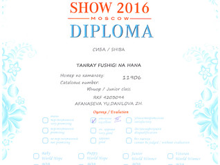 "Выставка: ""World Dog Show 2016"""