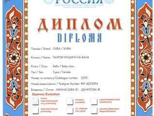 """Выставка: """"Россия 2015"""""""
