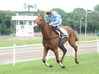 Chasing Olivia vinder i sin debut