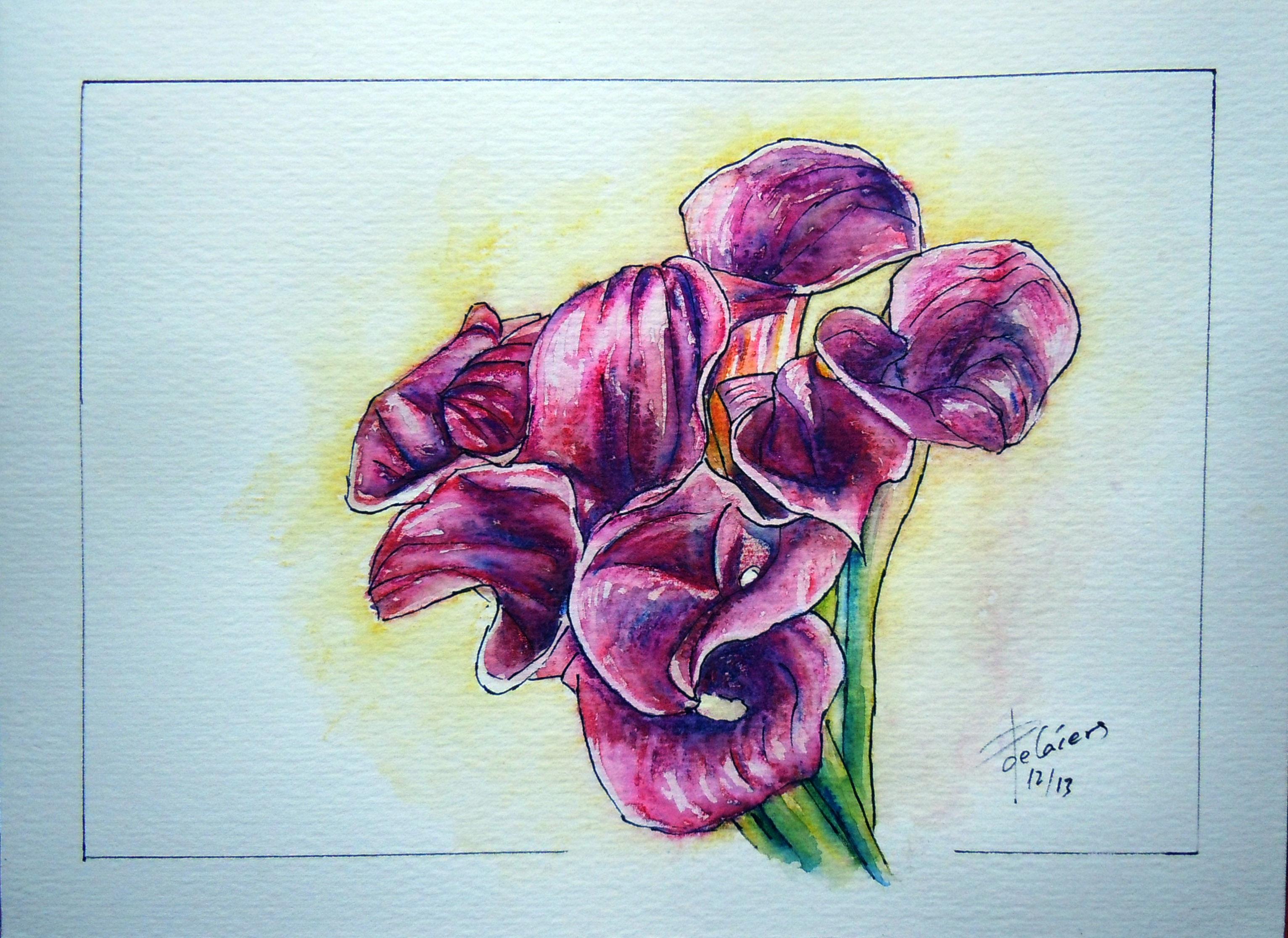 ramo de calas violetas