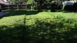 yard during.jpg