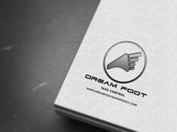 Dream Foot Software Logo