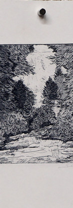 GRAVURA SÉRIE SHINRIN-YOKU