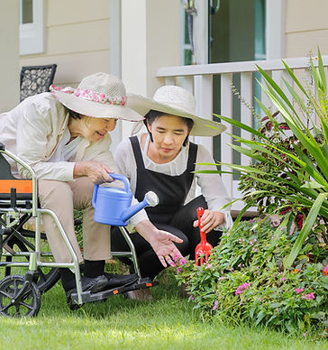 Elderly-woman-gardening-in-backyard-with