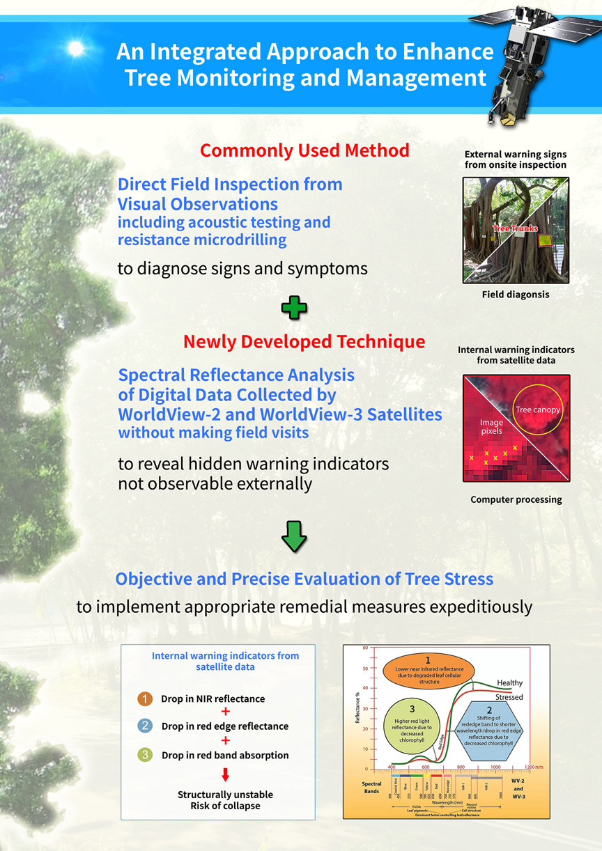 Integrated approach to enhance tree moni
