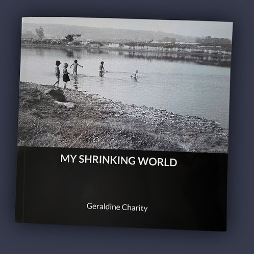 My Shrinking World by Geraldine Charity