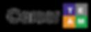 CarerrTEAM Logo high res.png