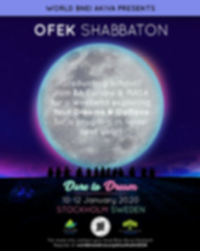 shabbaton stockholm 2020.jpg