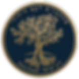 Zera-Israel-HE-logo-V2-gold-blue-small.p