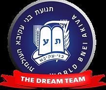 dream team logo.png
