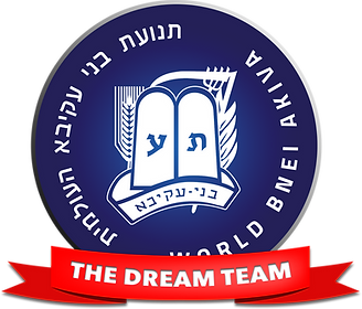 dream team logo.png