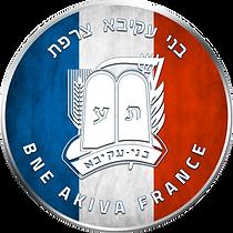 ba france logo.png
