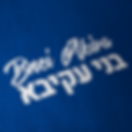 bnei akiva name embroided.png