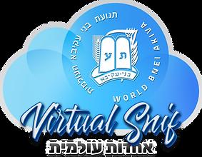 virtual snif logo transp.png