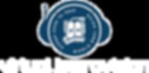 virtual jewrovision logo.png